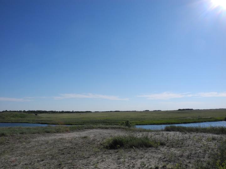Alberta, June '15 (167)